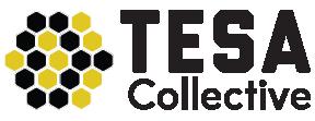 Toolbox TESA logo